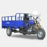Вантажний мотоцикл SP 200 TR-1